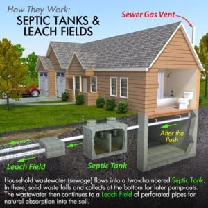 Septic System Process