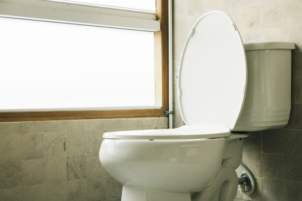 Old Toilet Fixture